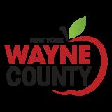 Wayne-County-Profile-1